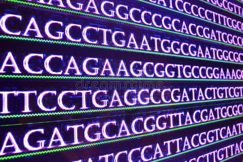 Secuencia del genoma foto de archivo