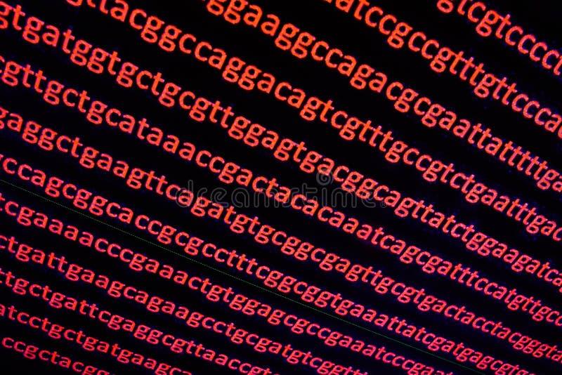 Secuencia del genoma fotos de archivo libres de regalías