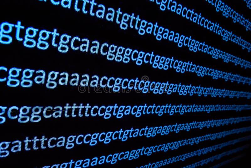 Secuencia del genoma imagen de archivo libre de regalías