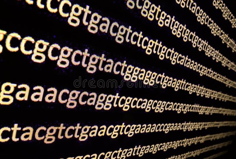 Secuencia del genoma fotos de archivo
