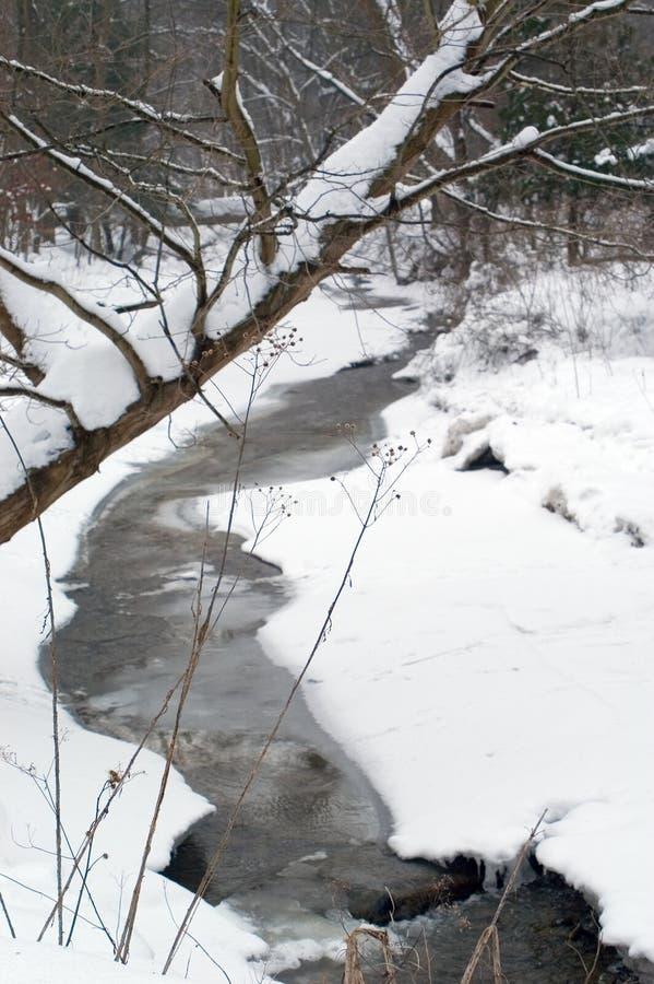 Secuencia en invierno   fotografía de archivo