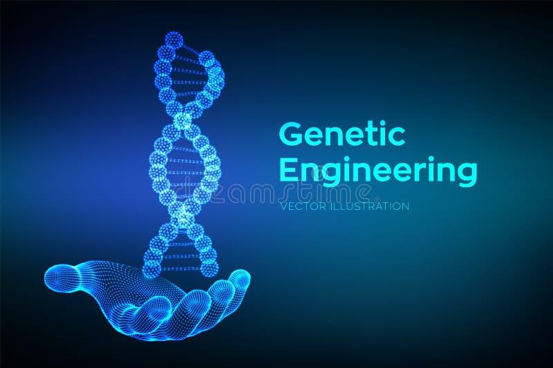 Secuencias de ADN a disposici?n Malla de la estructura de las mol?culas de la DNA de Wireframe Plantilla editable del c?digo de l libre illustration