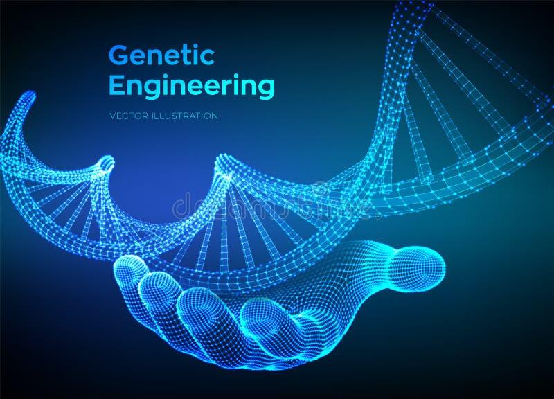 Secuencias de ADN a disposici?n Malla de la estructura de las mol?culas de la DNA de Wireframe Plantilla editable del c?digo de l ilustración del vector