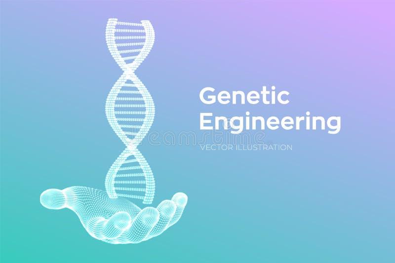Secuencias de ADN a disposici?n Malla de la estructura de las mol?culas de la DNA de Wireframe Plantilla editable del c?digo de l stock de ilustración