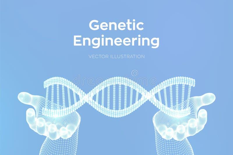 Secuencias de ADN en manos Malla de la estructura de las mol?culas de la DNA de Wireframe Plantilla editable del c?digo de la DNA stock de ilustración