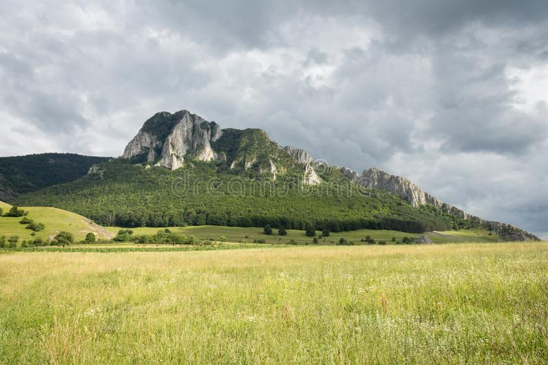 Secuiului岩石在罗马尼亚语的Piatra Secuiului或Coltii Trascaului 库存图片