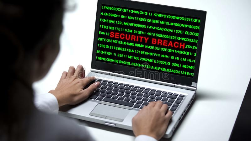 Security breach attack on laptop computer, woman working in office, cybercrime stock photos