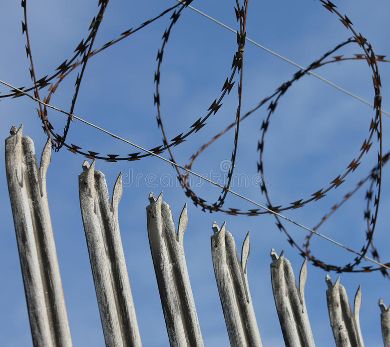 Security Fence with Razor Wire royalty free stock photos