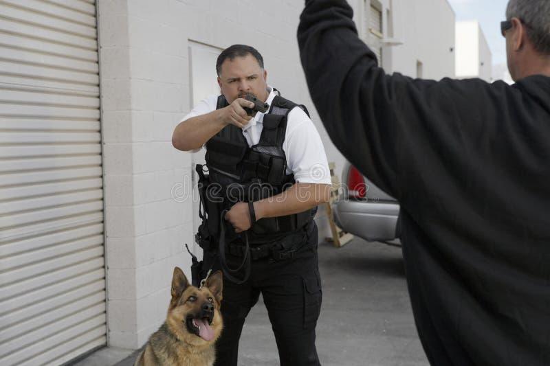 Security Guard Aiming Gun At Burglar. Security guard with dog aiming gun at burglar stock photos