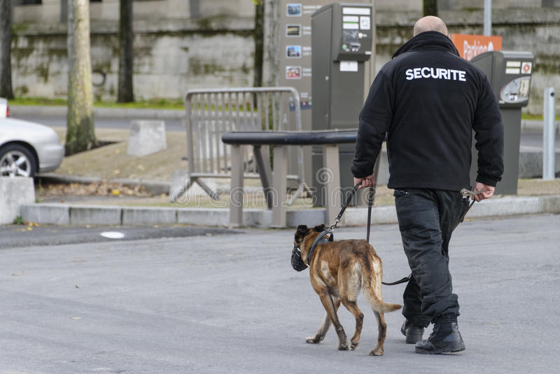Security guard with a dog stock photo