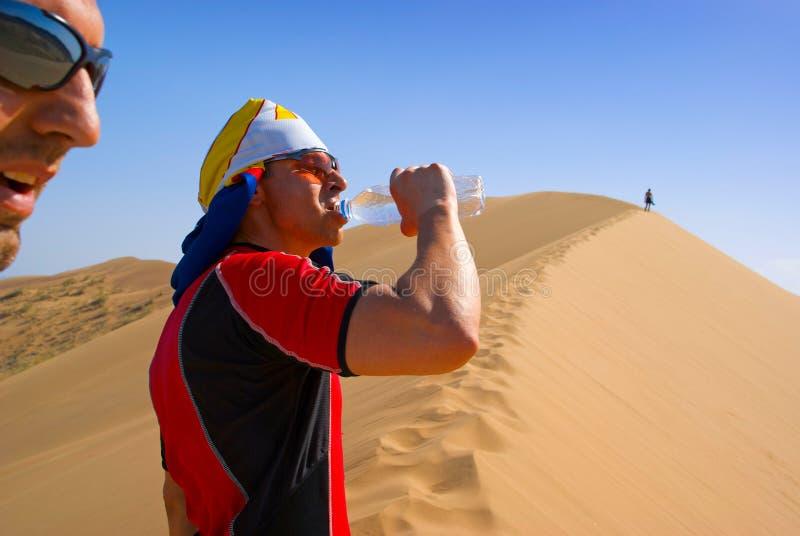 Sed en desierto de la arena foto de archivo
