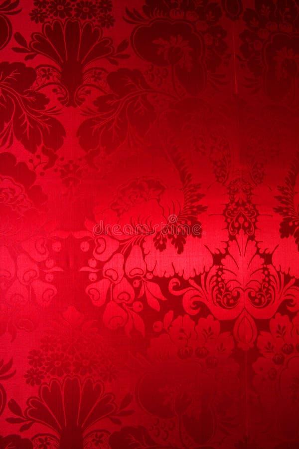 Seda vermelha com retrato bonito fotografia de stock royalty free