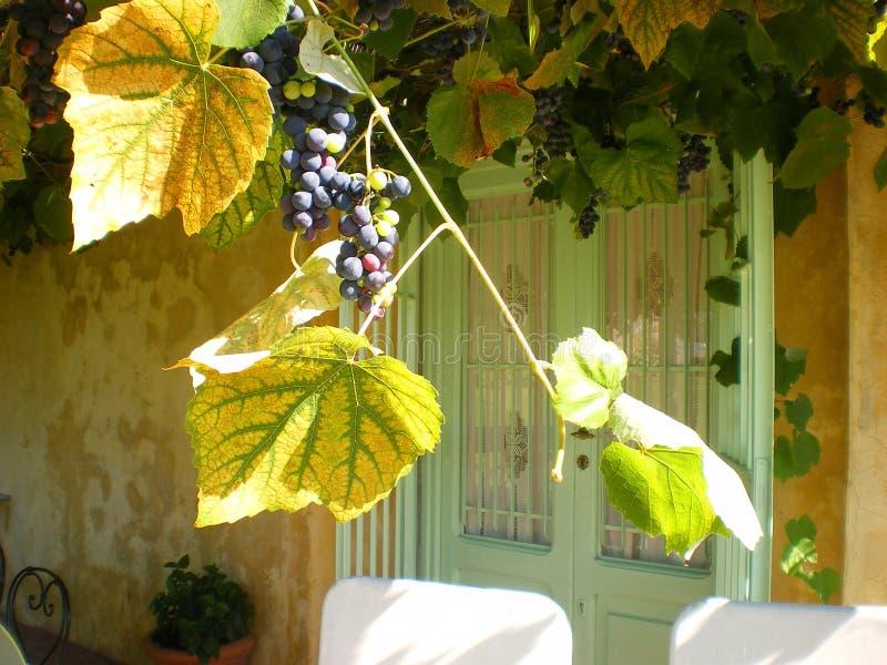 sede della riunione Toscana Italia di cerimonia nuziale del winefarm fotografia stock libera da diritti