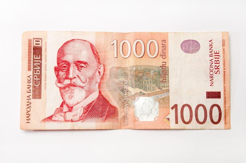 Sedel av tusen serbiska dinar royaltyfri fotografi