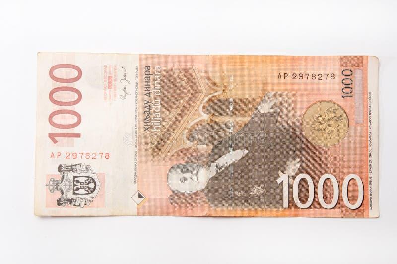 Sedel av tusen serbiska dinar royaltyfri foto