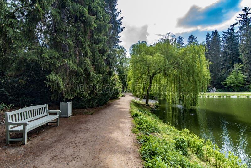 Sedendosi nel parco in repubblica Ceca di Pruhonice Praga fotografie stock libere da diritti