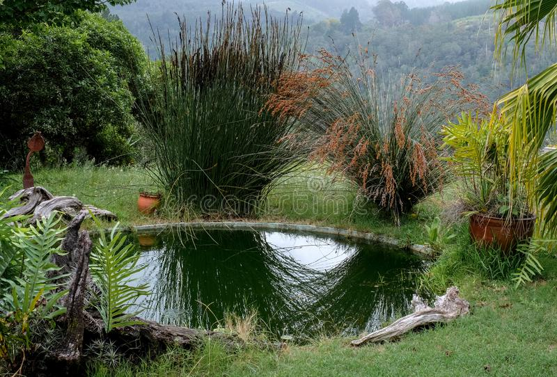 Sedgefield, Garden Route, South Africa: secluded garden with pond and view of the surrounding hills in the distance. royalty free stock images