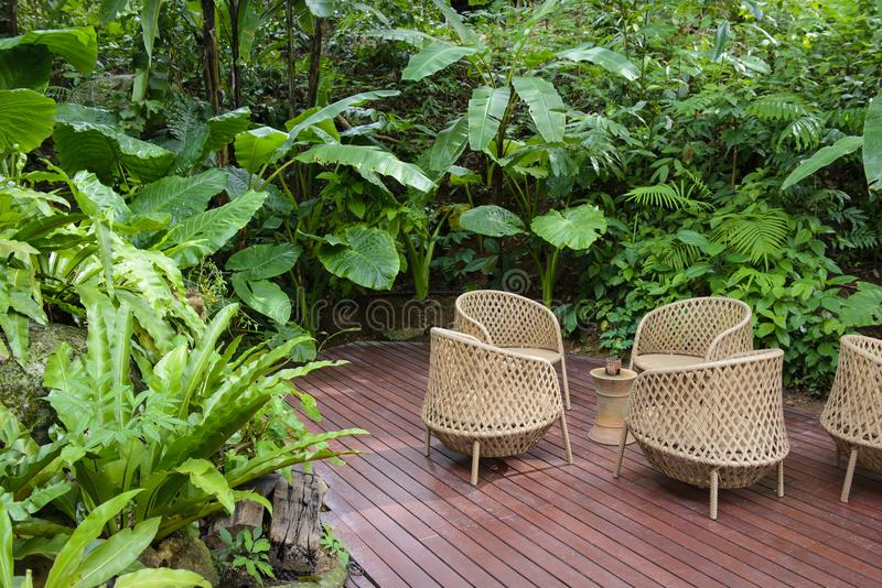 Sedia di vimini sul giardino del cortile di estate fotografia stock