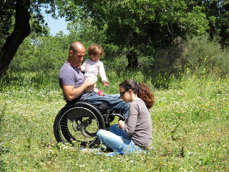 sedia a rotelle di picnic fotografia stock