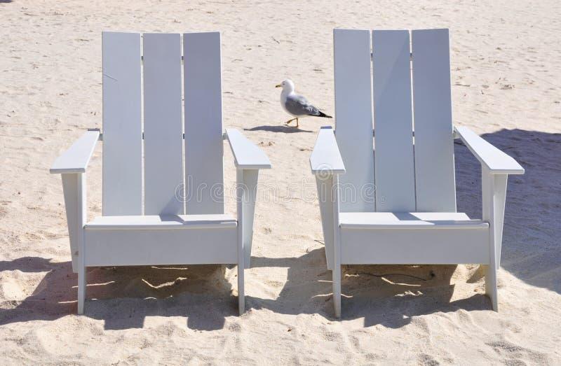 Sedie di legno bianche fotografia stock immagine di for Sedie bianche legno