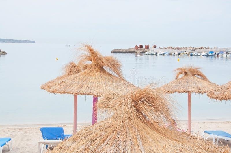 Sedie di spiaggia vuote e parasoli colourful della paglia fotografia stock