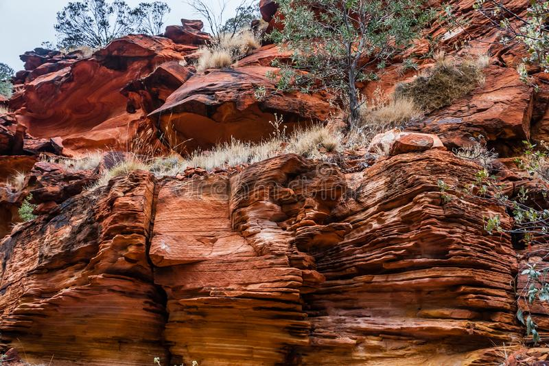 Sedimentary outcrops in Kings Canyon, Watarrka National Park, Australia. Kings Canyon is a canyon in the Northern Territory of Australia located at the western royalty free stock photos