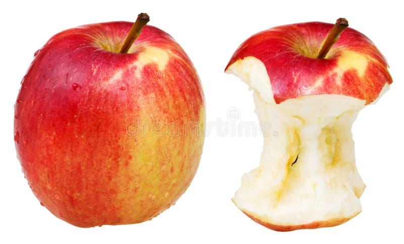 Sedno i cały zamożny jabłko zdjęcia royalty free