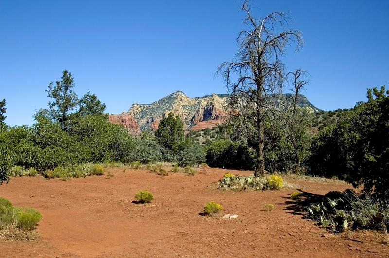 Download Sedona 1 stock photo. Image of hiking, america, erosion - 3420726