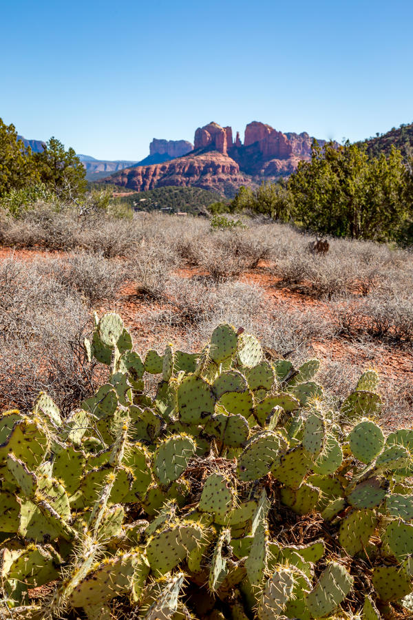 Sedona and Oak Creek Canyon Landscapes. Red rocks of Sedona and Oak Creek Canyon stock photos