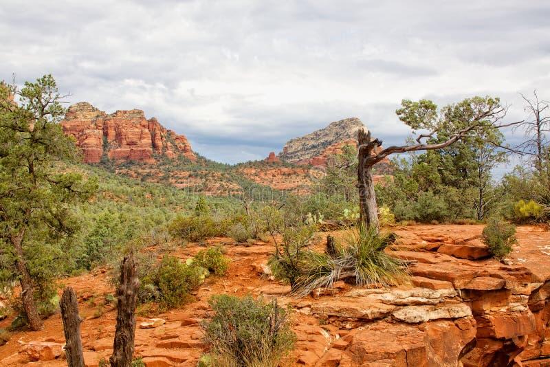 Sedona Red Rock Landscape royalty free stock photos