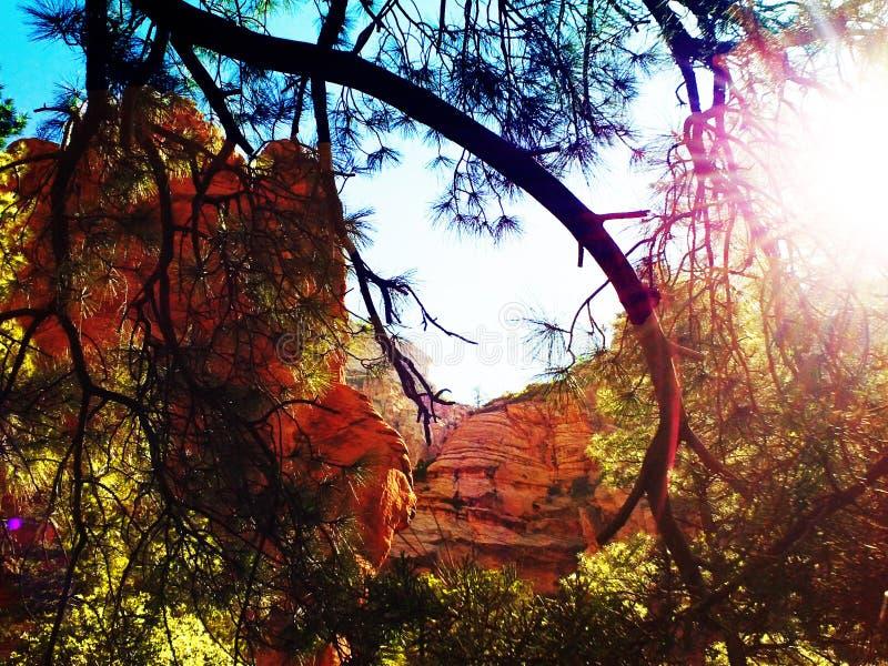 Sedona Rode Rotsen Arizona stock foto's