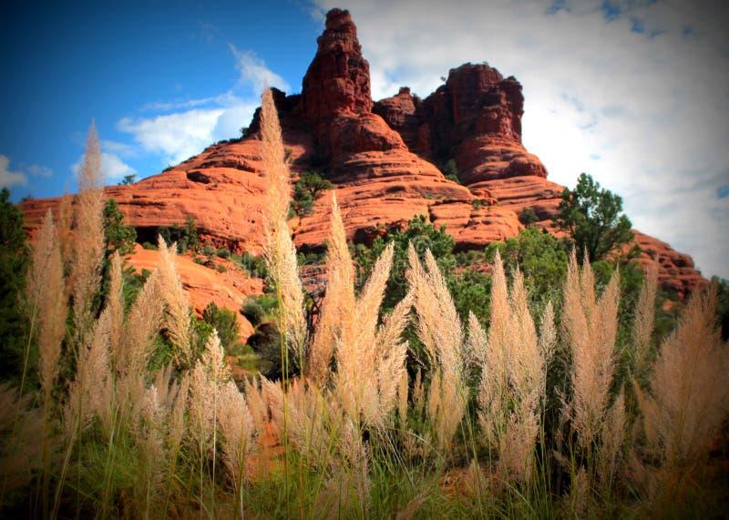 Sedona - roter Felsen-Nationalpark lizenzfreies stockfoto
