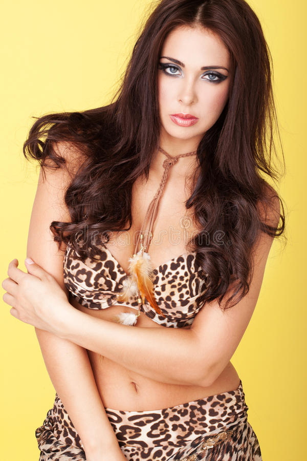 Download Seductive Young Lady In Leopard Print Outfit Stock Image - Image: 25408413