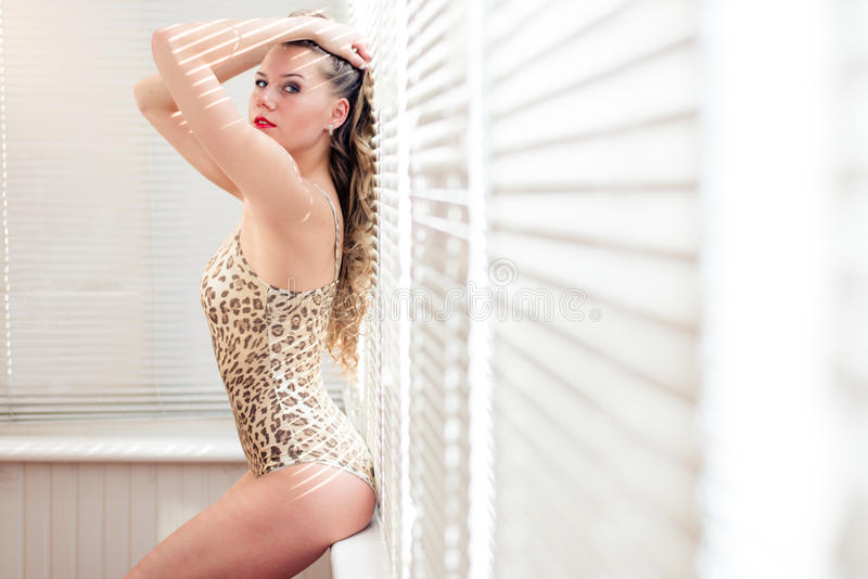 Seductive young woman beautiful girl in tiger or leopard bodysuit sitting on the window sill against shutters lig stock images