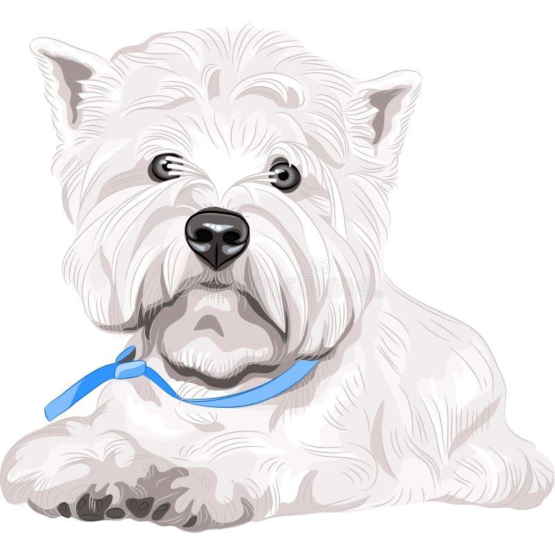 seduta bianca della razza di West Highland Terrier del cane illustrazione di stock