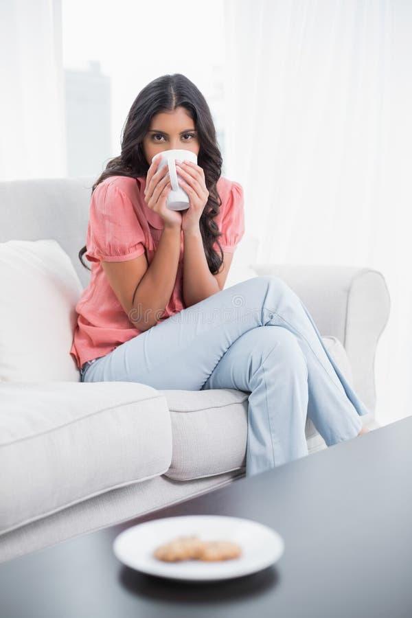 Seduta castana sveglia calma sullo strato che beve dalla tazza immagine stock