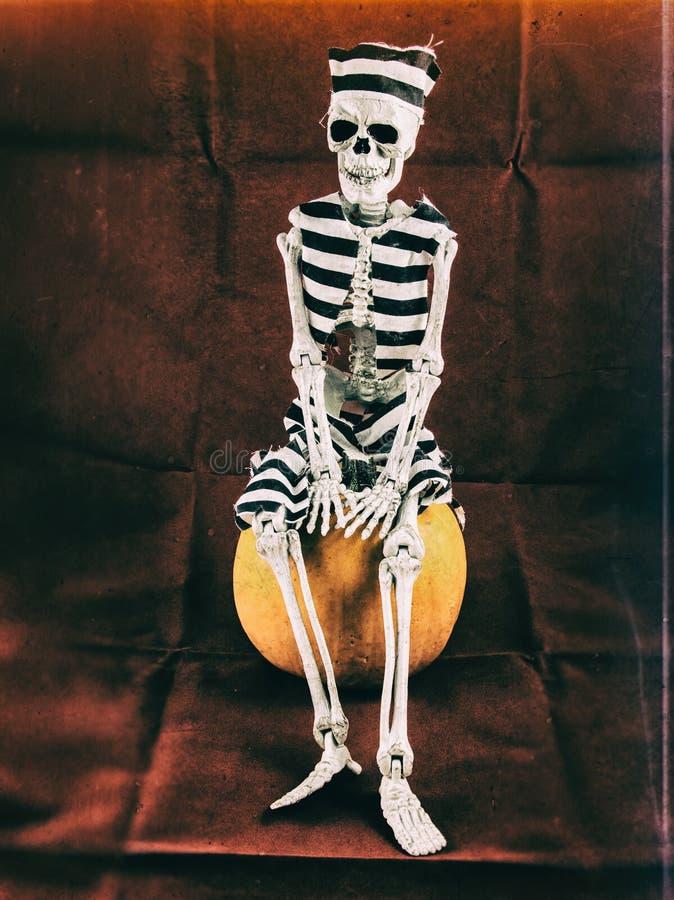 Seduta di scheletro del prigioniero sulla zucca fotografia stock