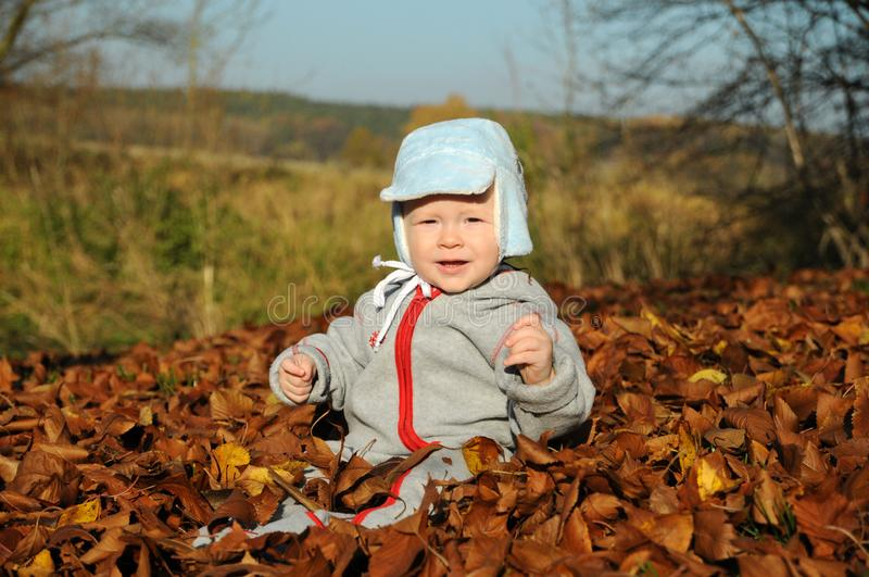 Seduta felice del ragazzino circondata dalle foglie cadute fotografia stock libera da diritti