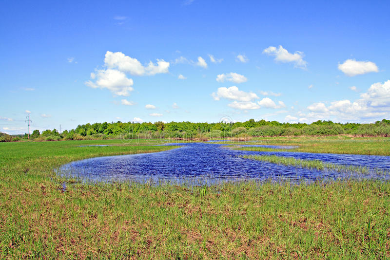 See auf Feld stockbilder