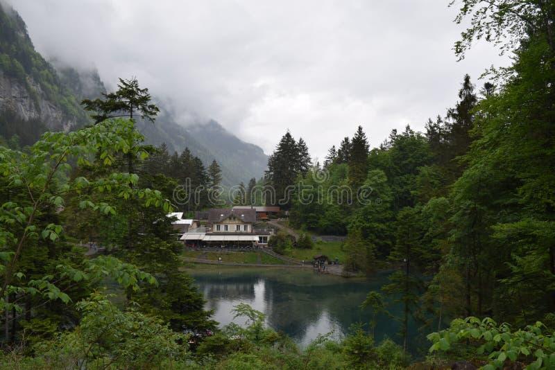 See Blausee, die Schweiz lizenzfreie stockfotografie
