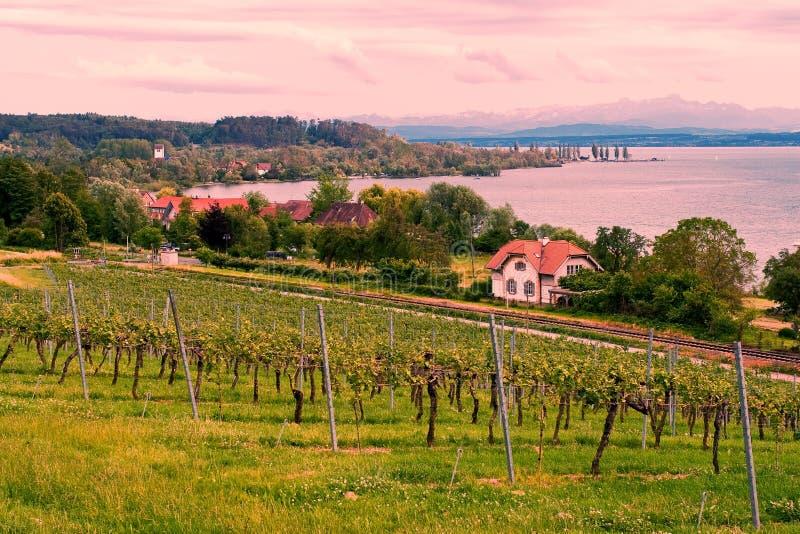 See Bodensee Landschaft lizenzfreie stockbilder