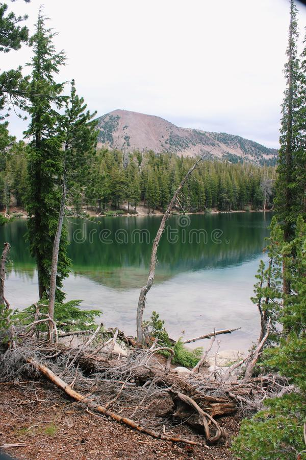 See in der Wildnis stockbild