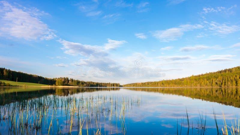 See, Himmel und Wald stockbild