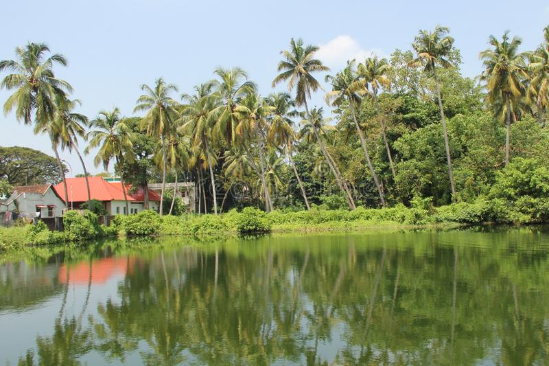 See im Fort Kochi stockfotografie