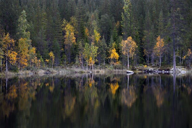 See im Herbst stockbild
