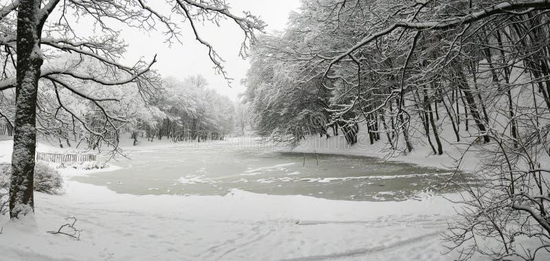 See im Winter lizenzfreies stockbild