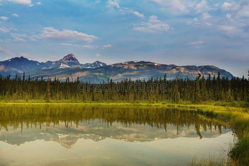 Download See in Kanada stockfoto. Bild von berge, berg, fischen - 90227178