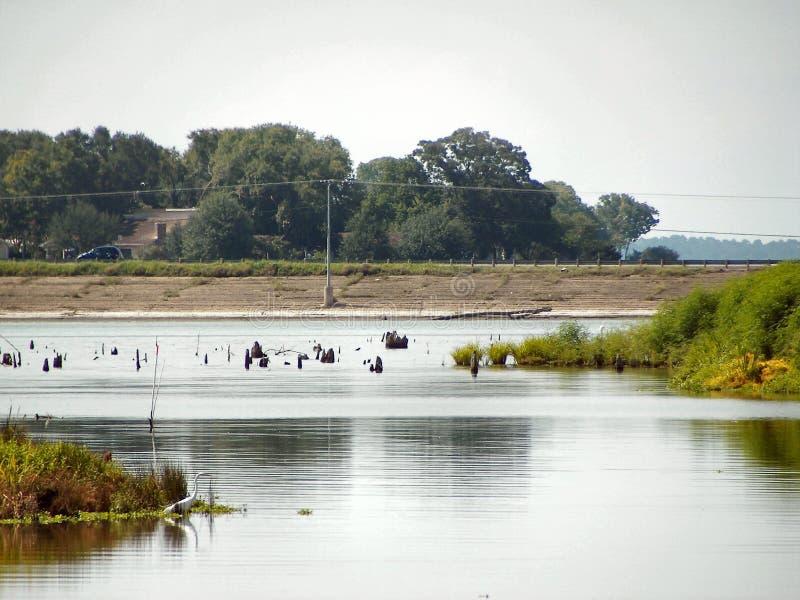 See-Livingston-Niedrigwasser-Niveau lizenzfreie stockfotos