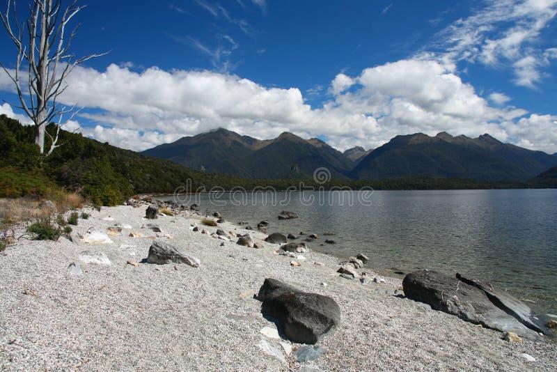 See Manapouri lizenzfreie stockfotografie