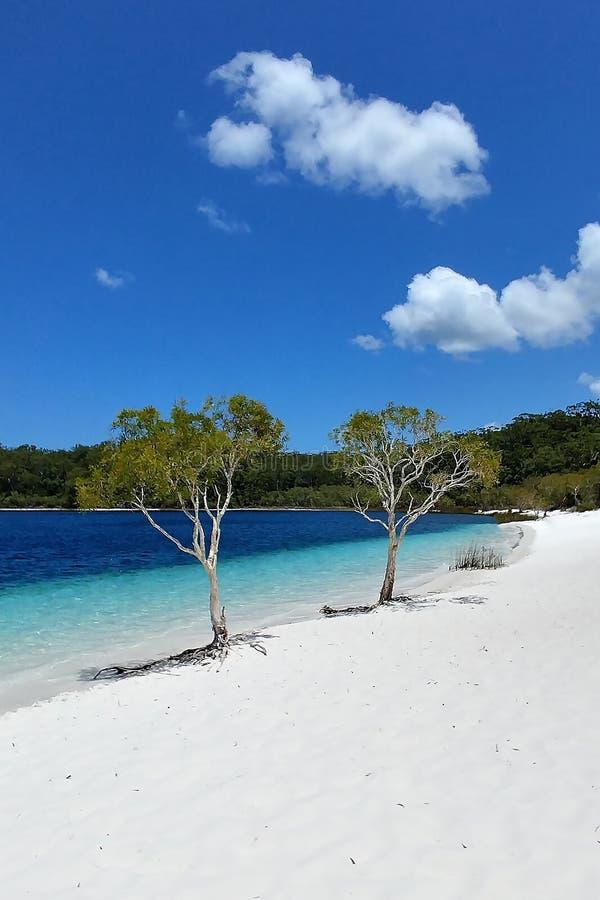See Mckenzie Fraser Island Boorangoora lizenzfreie stockbilder